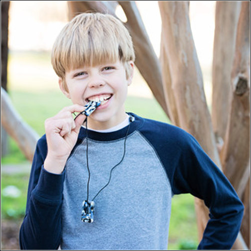 ChewiGem Chew Necklace Dog Tags